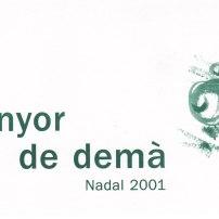 Tot l'enyor de demà (2001)